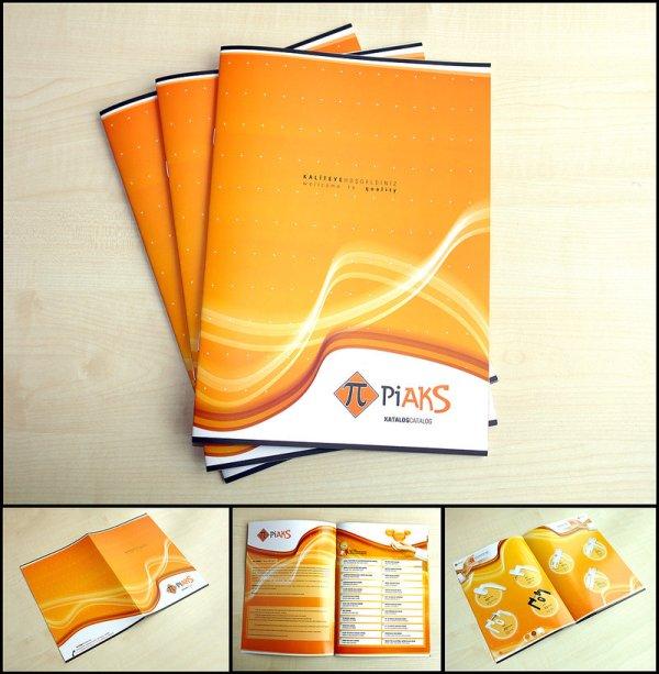 Thiết kế catalogue màu cam