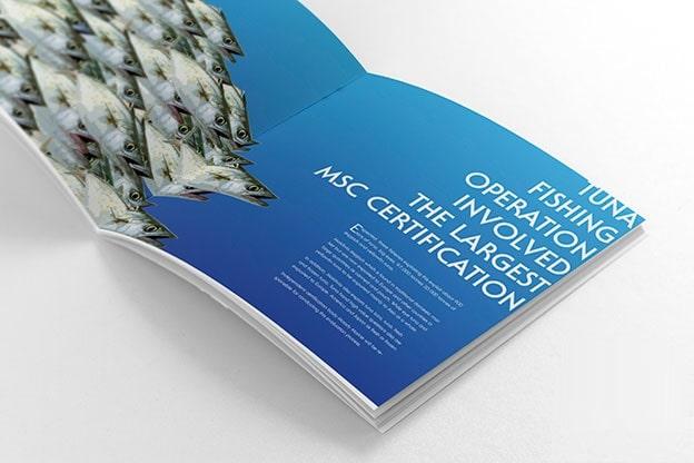 Thiết kế catalogue xanh dương
