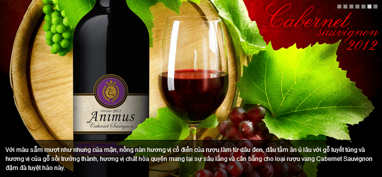 Mẫu in brochure rượu vang của công ty Animus