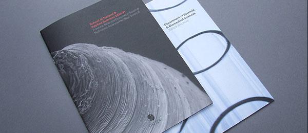 thiết kế trang bìa catalogue thu hút