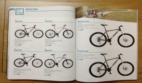 mẫu thiết kế catalogue xe đạp đẹp