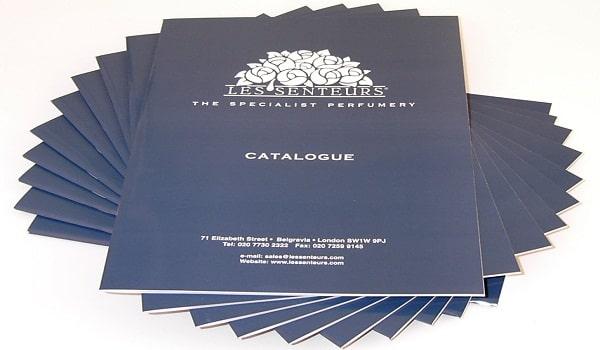 Thiết kế catalogue màu chữ sáng, hoạ tiết đơn giản