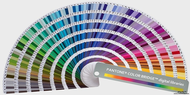Thuật ngữ pantone trong thiết kế in ấn