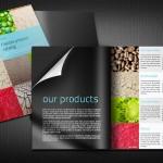 Giới thiệu bộ thiết kế catalogue đẹp cho năm 2016