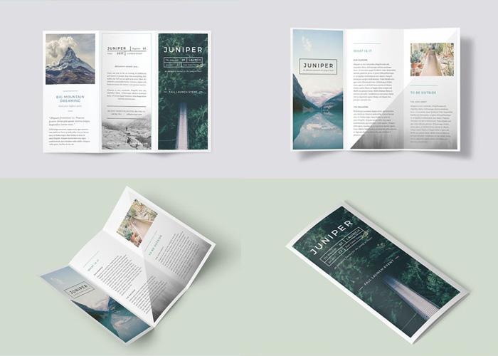 Kích thước brochure thông dụng - brochure A4 gấp 3