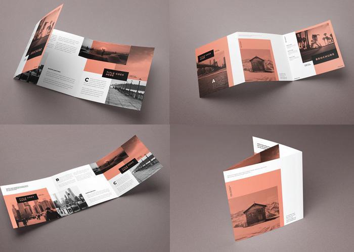 Kích thước brochure vuông gấp 3