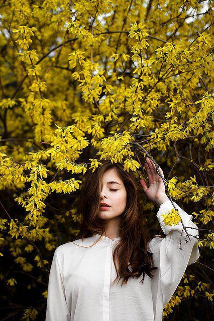 Hình ảnh đẹp trên mẫu in voucher màu vàng
