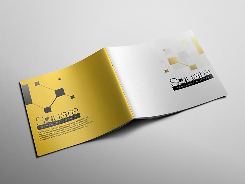 Thiết kế bìa brochure hình vuông
