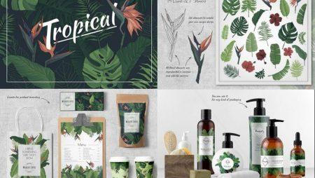 9 bộ nhận diện thương hiệu chủ đề xanh thiên nhiên ấn tượng.