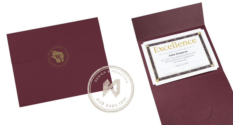 Mẫu bằng khen công ty chuyên nghiệp  - Certificate of business