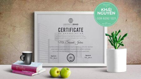 Mẫu bằng khen công ty – giấy khen thưởng công ty- certificate of business